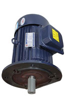 Y three phase induction motor